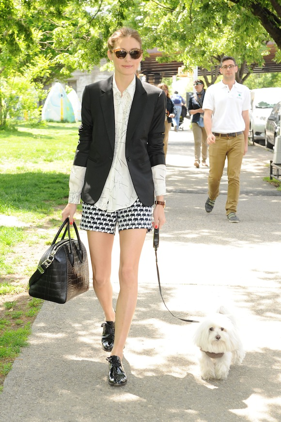 Olivia Palermo taking her dog for a stroll in NYC wearing the new Banana Republic Milly shorts